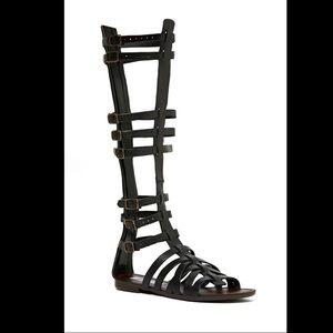 Steve Madden tall Sparta gladiator sandals